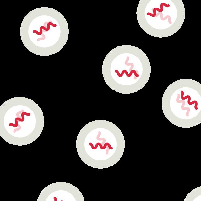 シングルセルRNA-seq解析
